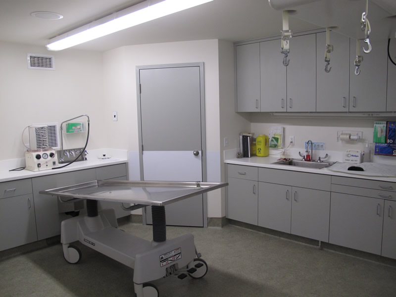 beggs_alt1_preparation_room_design